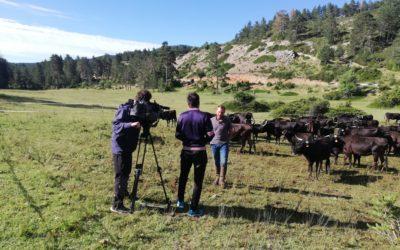 Aragón Televisión en la sierra de Cuenca